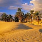 tunis-pustinja