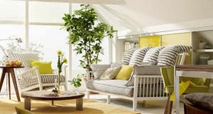 Kako da sačuvate biljke dok ste na godišnjem odmoru